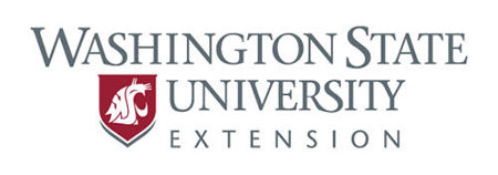 Imagen para la categoría Extension Materials