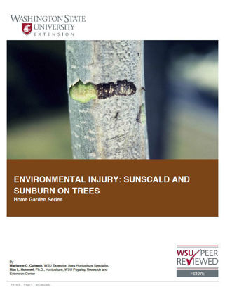 Imagen de Environmental Injury: Sunscald and Sunburn on Trees (Home Garden Series)